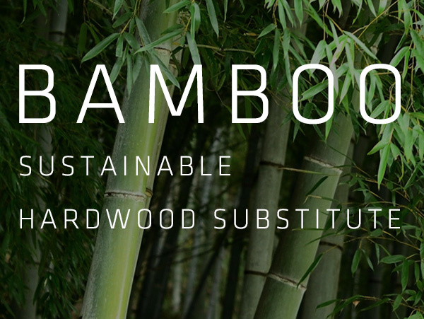 Bamboo Option